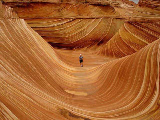 wave-arizona