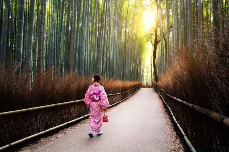 Un Paseo En El Bosque De Bambu 101 Lugares Increibles