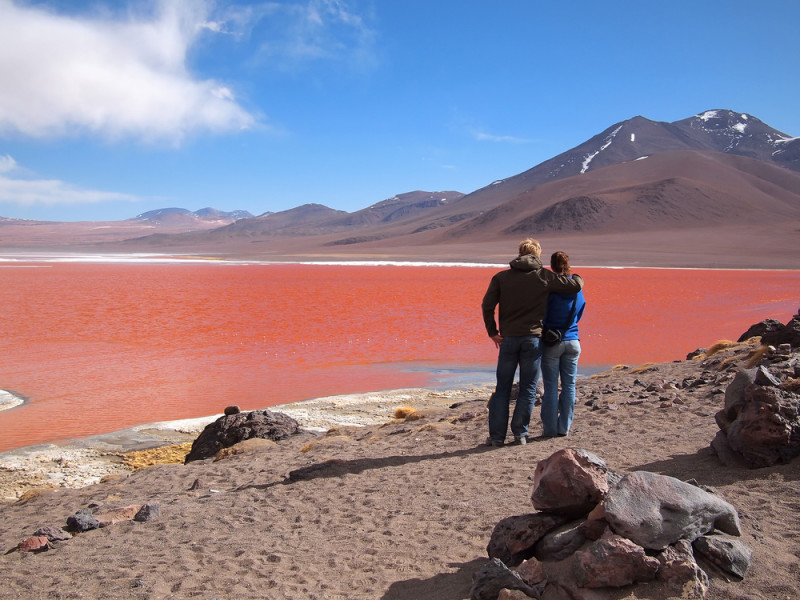 laguna-colorada-bolivia (2)