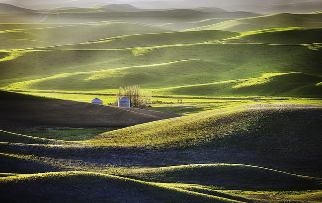 palouse-estados-unidos