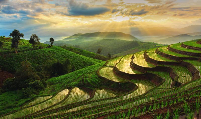 tailandia-fotos-imagen