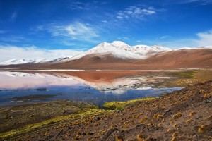 altiplano-laguna-colorada