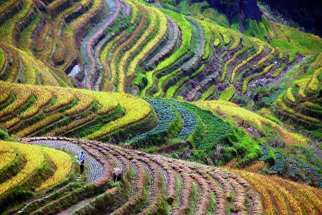 Uno De Los Paisajes Más Bonitos De China Imágenes En Taringa