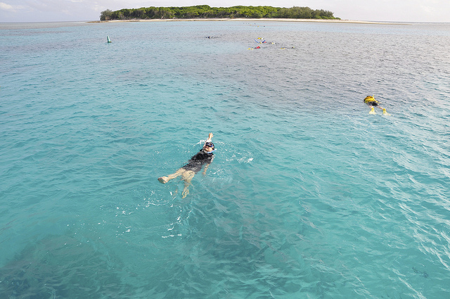 lady-musgrave-island-australia
