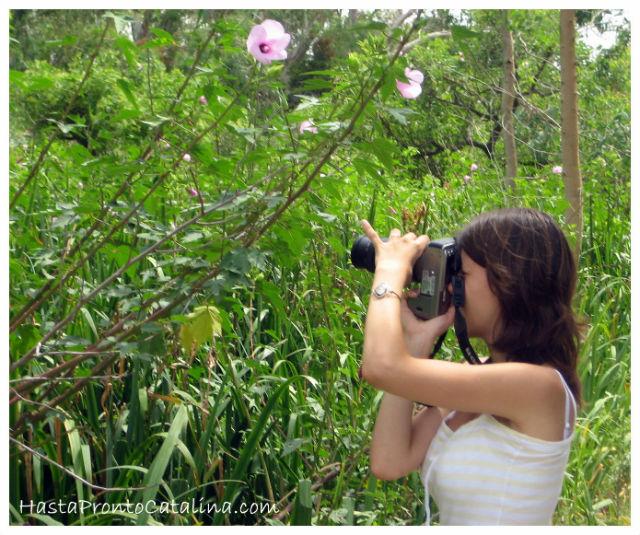 blog-viajes-hasta-pronto-catalina
