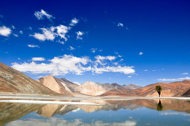 pangong-tso-tibet-china