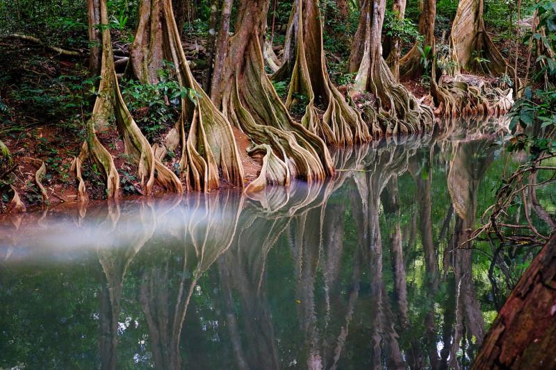Un río en Dominica que parece de fantasía (al que solo le faltan los piratas del Caribe)