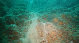 Una increíble cascada de arena bajo el mar (vídeo) en Cabo San Lucas, México