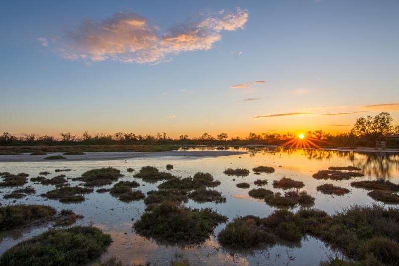 camarga-parque-nacional-francia