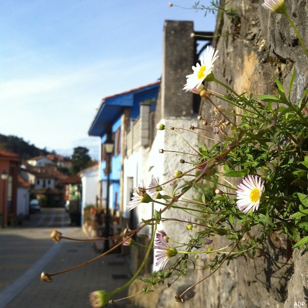 pueblos-bonitos-torazo-asturias