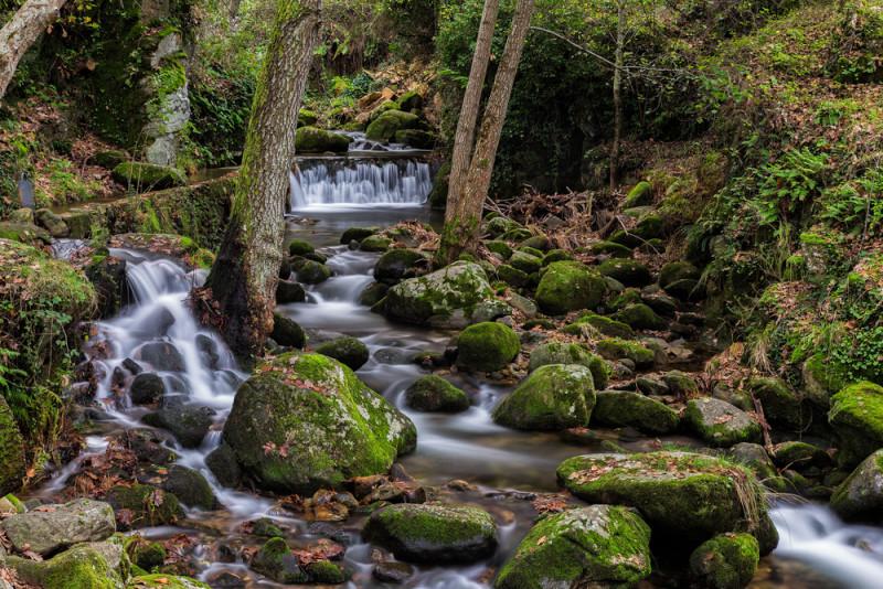 rio-gallego-hervas