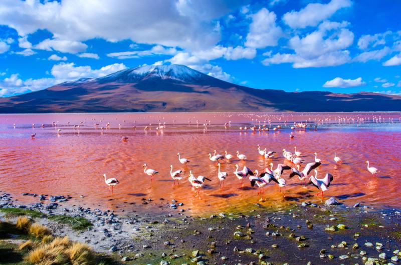 Bolivia  Climate  Britannicacom