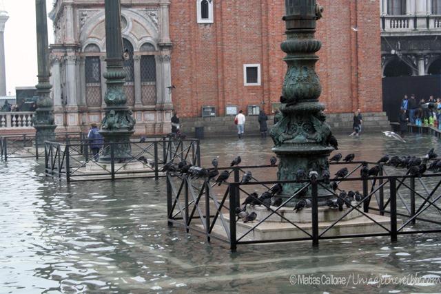 Venice2005_0002