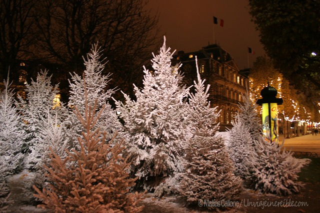 París2005_0034