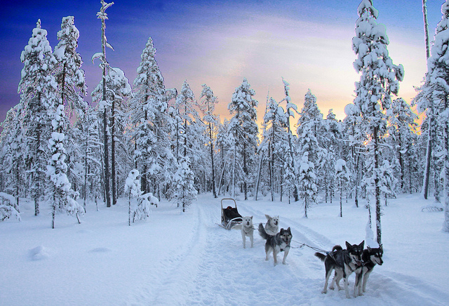 Un paseo por un paraíso helado (Kainuu, Finlandia) - 101 Lugares increíbles