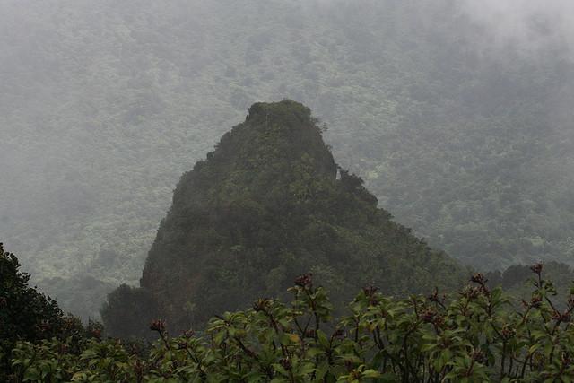 yunque-puerto-rico