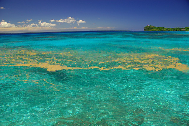 Entre los paraísos tropicales que se pasan de turquesa, las Islas de la Lealtad - 101 Lugares increíbles