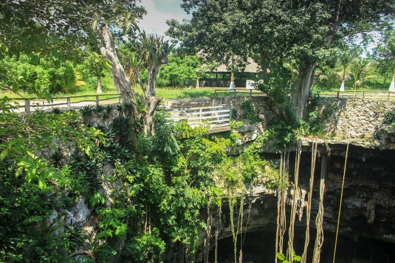 Riviera-Maya-cenote-oxman-9088