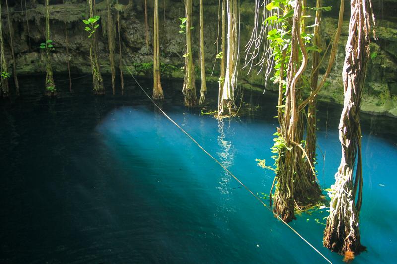 Riviera-Maya-cenote-oxman-9095