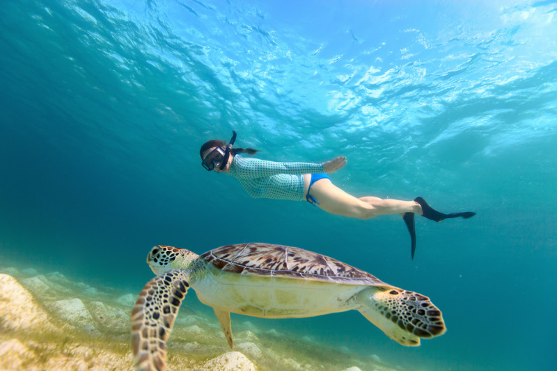 excursion-snorkel-cancun