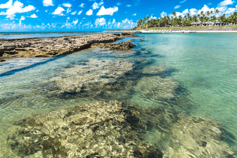 mejores-playas-brasil-maragogi