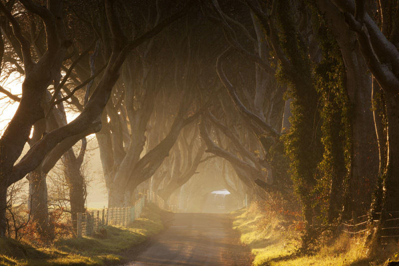 dark-edge-irlanda