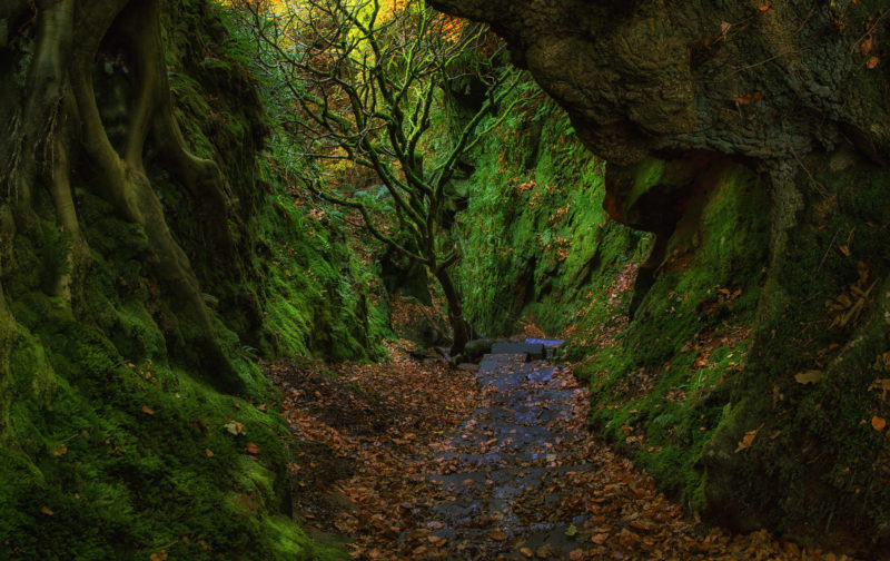 finnich-gorge-scotland